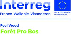 LogoProjets_Feel Wood_FORET PRO BOS